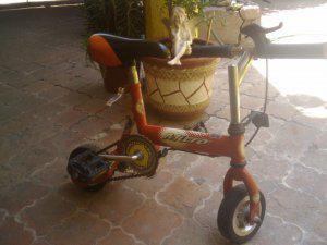 Bicicleta micro para adulto o niño