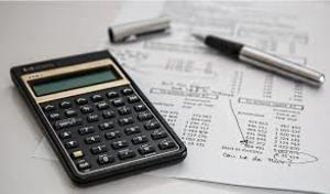Contador publico. servicios contables y fiscales.