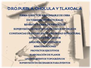 D. r. o. cholula, puebla y tlaxcala 2019. director