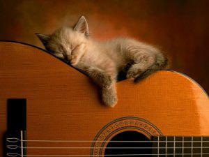 Excelente guitarra acústica yamaha c_40