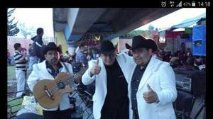 Grupo norteño de ecatepec $ 2,300 x 1 hora con audio gratis