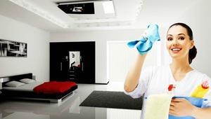 Limpieza servicios domesticos 5534616001