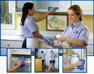 Servicios domesticos limpieza de oficinas
