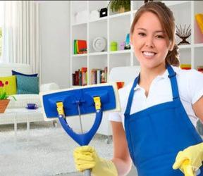 Servicios domesticos limpieza de oficinas 5534616001