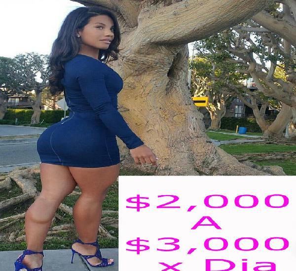 Ofresco buen sueldo DE ASTA 60 MIL PESOS SEMANALES