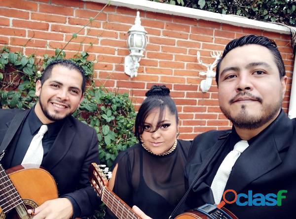 Serenatas con trio cdmx
