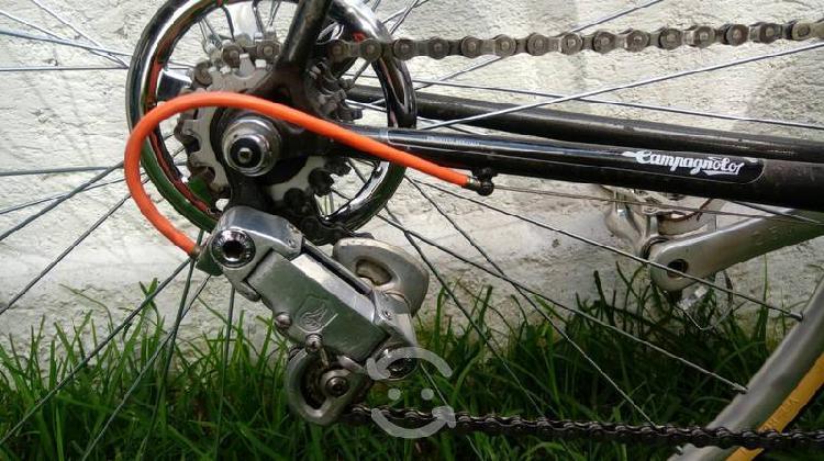 Cubre rayos/cadena antiguo para rin trasero