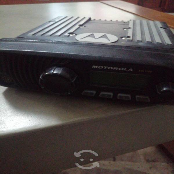 Radio motorola xtl1500