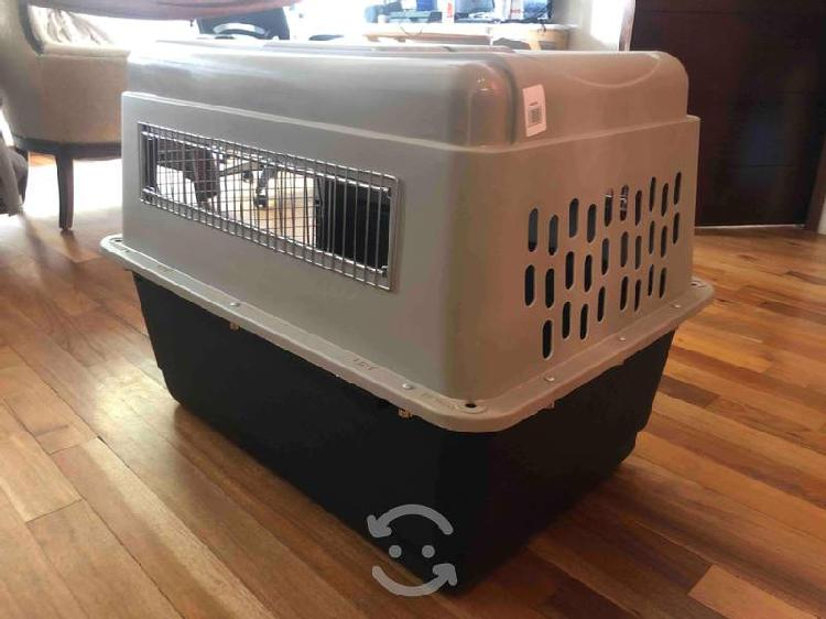 Transportadora para perros