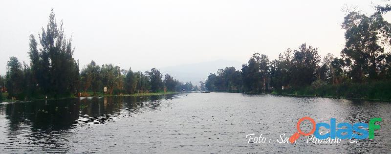 Viajes locales a Xochimilco.