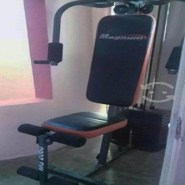 Equipo de gimnasio en casa(gimnasio, banca y bici)