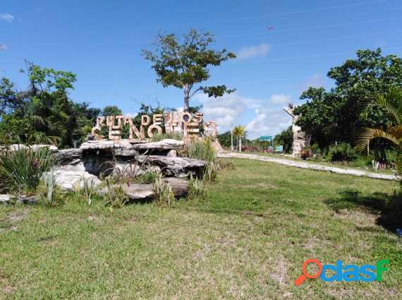 Invierte en puerto morelos, q. roo, ruta de los cenotes