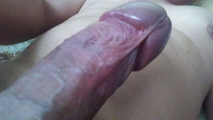 Vergota deliciosa y cojelona 20 cm