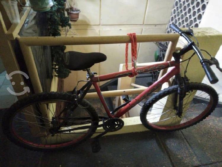 Bicicleta colnago r26 con suspension delantera