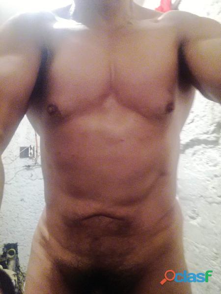 Ricos deliciosos masajes macho alfa 66