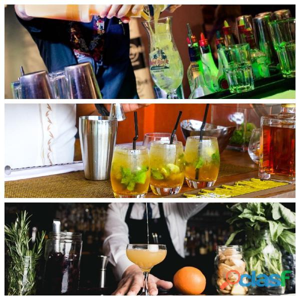 Barman, show flair, coctelería y mixología.