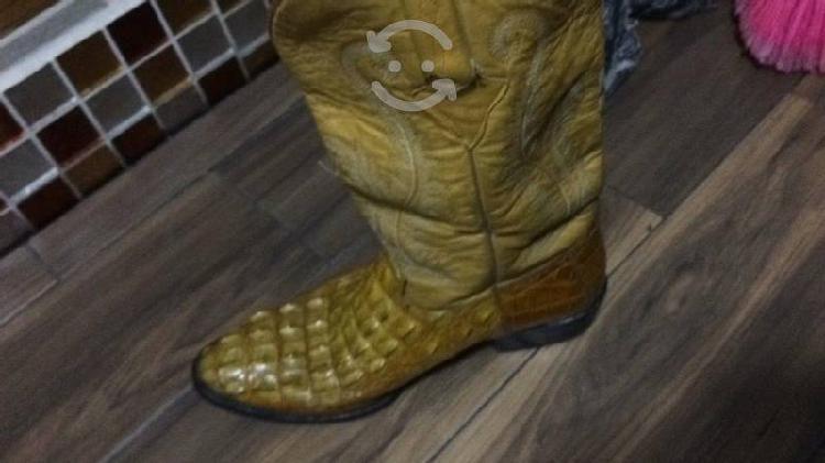 Botas piel de cocodrilo suela ofrece $ cuero uso