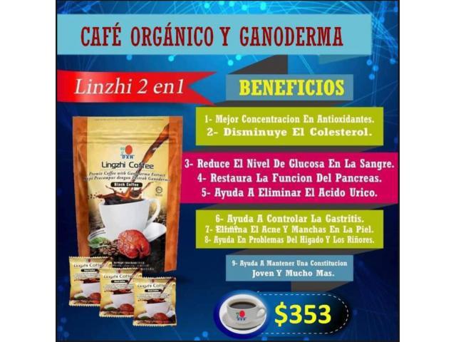 Venta de café orgánico lingzhi coffe ciudad de méxico