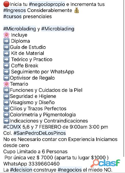 Curso Intensivo de Microblading y Microshading para Principiantes 2
