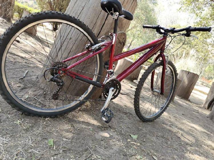 Bicicleta de montaña, coleccion