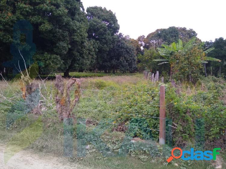 Venta terreno 7000 m² esquina higueral tuxpan veracruz, higueral