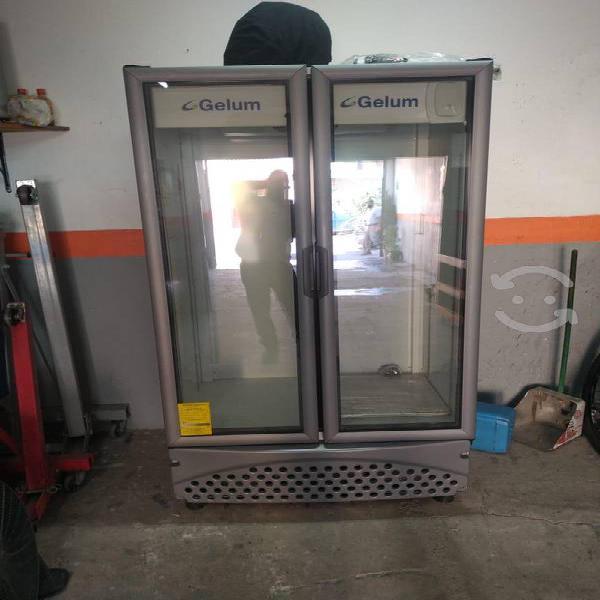 Enfriador vertical 2 puertas gelum vr 26