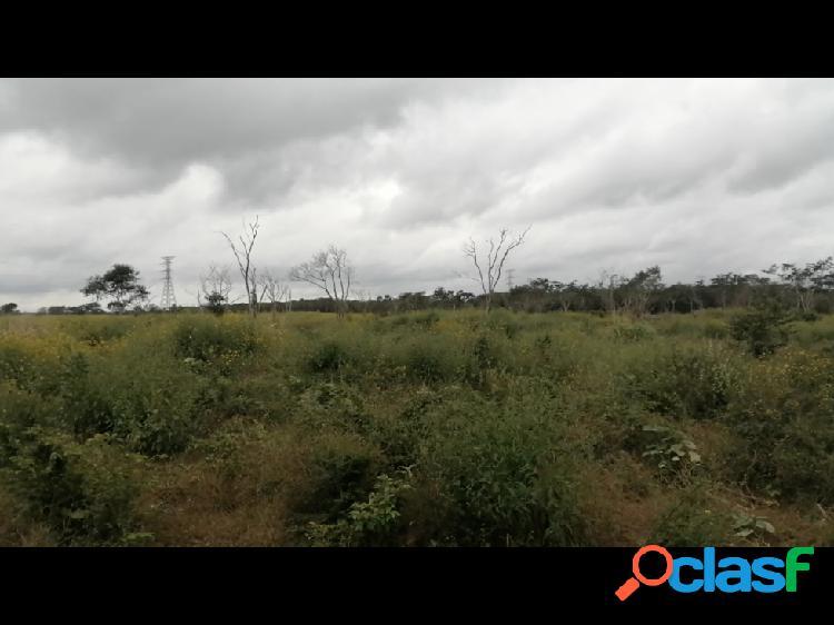 Terreno en venta cerca de merida en la rivera yucateca