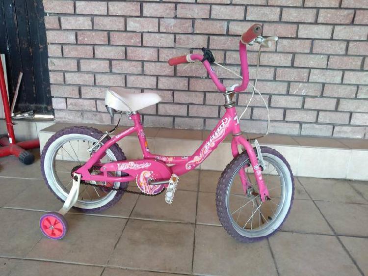 Bicicleta rodada 16 con ruedas little princess