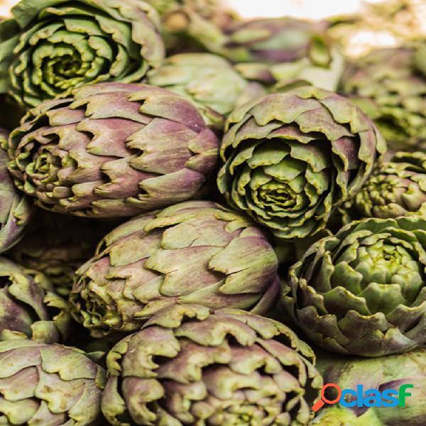 Egrow 20 unids / pack alcachofa semillas globo bonsai vegetal para jardín de hogar planta