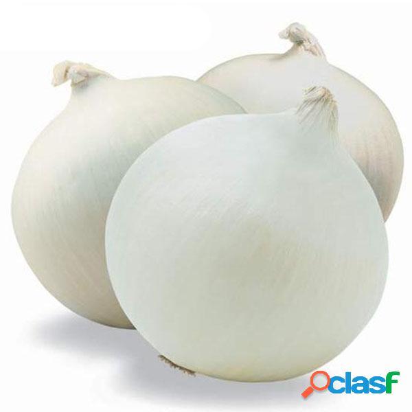 Egrow 200 unids / pack semillas de cebolla blanca seasoner de cocina vegetales orgánicos semillas de plantas de jardín diy