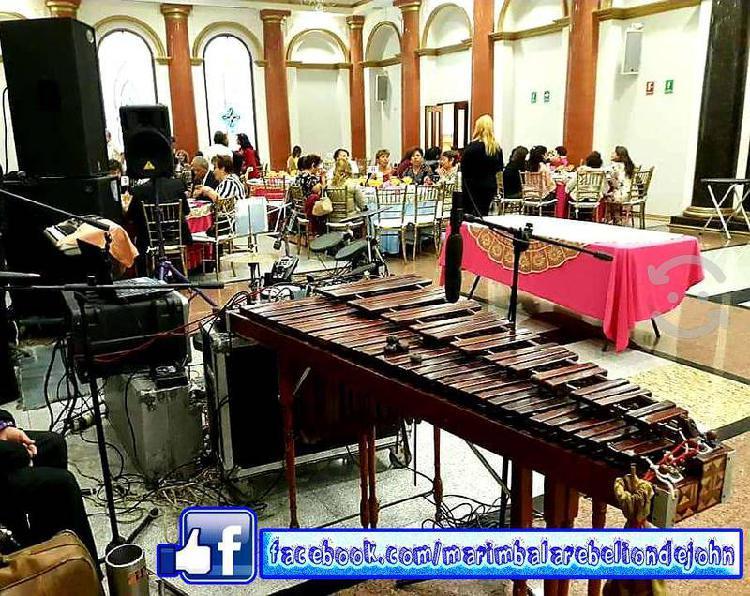 Marimba y grupo versátil con audio