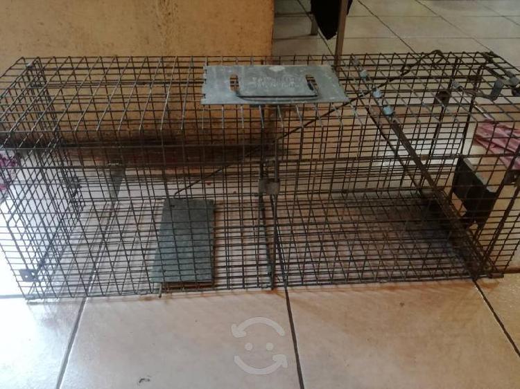 Havahart trampa para animales (gatos, mapaches, ar