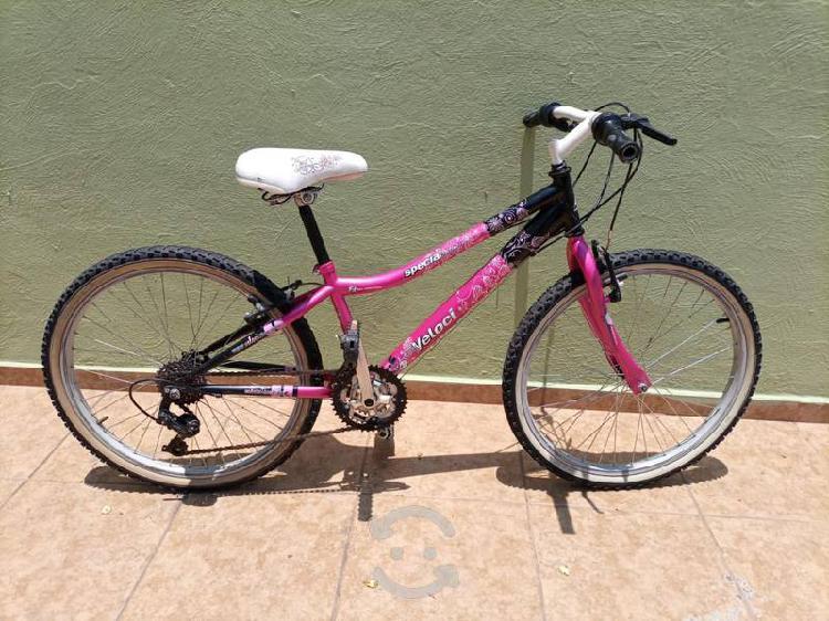Bicicleta veloci r24, edición especial