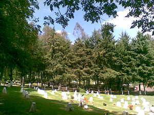 Parque memorial fosa cuádruple servicios completos jardín