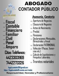 Abogado y Contador Publico