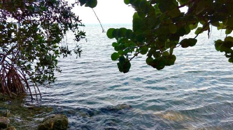 Se vende terreno en calderitas. frente al mar