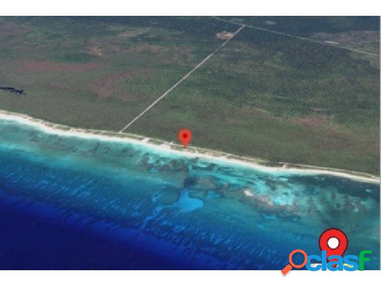 Terreno mahahual xcalak camino costero