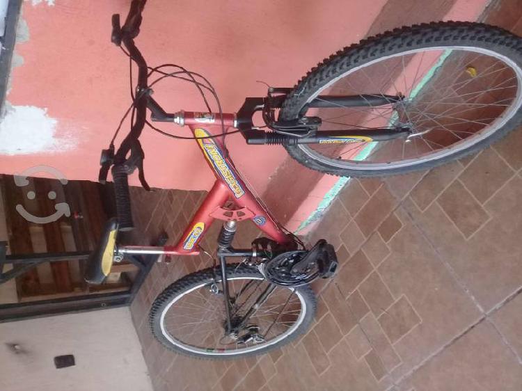 Bicicleta de montaña rodado 28