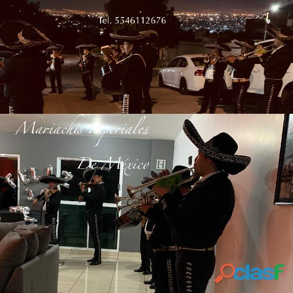 Mariachis en chiluca 5546112676 telefono mariachi 24 horas
