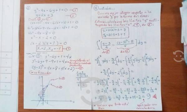 Asesorías profesionales matemáticas y física